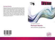 Bookcover of Perineal Hernia