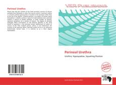 Portada del libro de Perineal Urethra