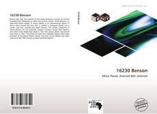 Bookcover of 16230 Benson