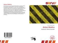 Copertina di Anton Wodica