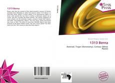 1313 Berna kitap kapağı