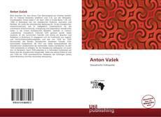 Bookcover of Anton Vašek