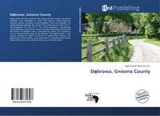 Dąbrowa, Gniezno County的封面