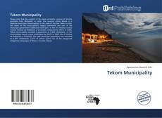 Bookcover of Tekom Municipality