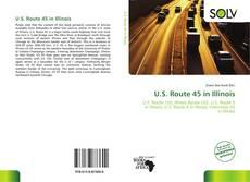 Bookcover of U.S. Route 45 in Illinois