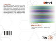 Bookcover of Wayson Stain