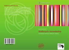 Wałbrzych Voivodeship kitap kapağı