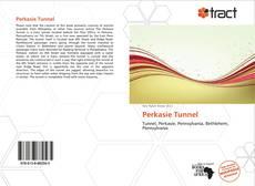 Capa do livro de Perkasie Tunnel