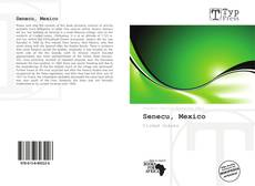 Bookcover of Senecu, Mexico