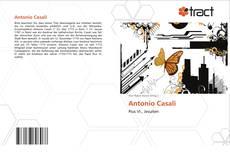 Bookcover of Antonio Casali