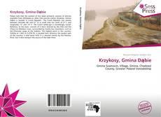 Capa do livro de Krzykosy, Gmina Dąbie