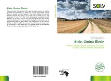 Biele, Gmina Ślesin kitap kapağı