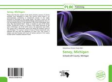 Portada del libro de Seney, Michigan