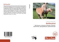 Bookcover of Bettlerpfad