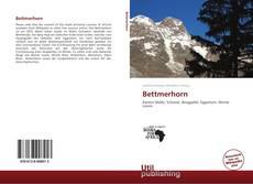 Buchcover von Bettmerhorn