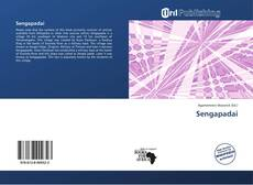 Bookcover of Sengapadai