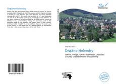 Buchcover von Drążno-Holendry