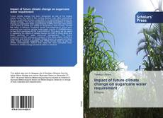Bookcover of Impact of future climate change on sugarcane water requirement