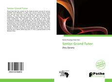 Bookcover of Senior Grand Tutor