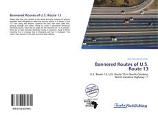 Bannered Routes of U.S. Route 13的封面