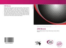 Capa do livro de 290 Bruna