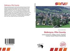 Bookcover of Dobrzyca, Piła County