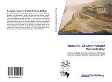 Bookcover of Borucin, Greater Poland Voivodeship