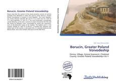 Borucin, Greater Poland Voivodeship的封面