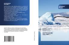 Bookcover of DEPRESSION VOLUME 2