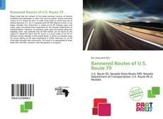 Bannered Routes of U.S. Route 79的封面