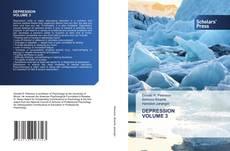 Bookcover of DEPRESSION VOLUME 3
