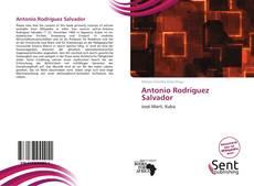 Portada del libro de Antonio Rodríguez Salvador