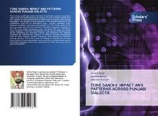 TONE SANDHI: IMPACT AND PATTERNS ACROSS PUNJABI DIALECTS的封面