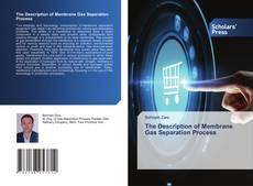 Обложка The Description of Membrane Gas Separation Process
