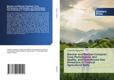 Capa do livro de Biochar and Biochar-Compost: Crop Performance, Soil Quality, and Greenhouse Gas Emissions in Tropical Agricultural Soils