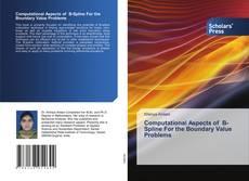 Computational Aspects of B-Spline For the Boundary Value Problems kitap kapağı