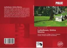 Portada del libro de Ludwikowo, Gmina Mosina
