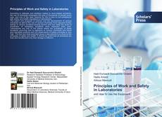 Bookcover of Principles of Work and Safety in Laboratories