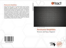 Bookcover of Persicaria Amphibia
