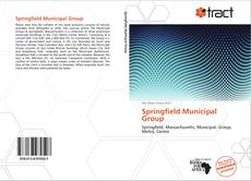 Bookcover of Springfield Municipal Group