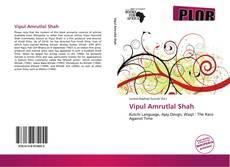 Bookcover of Vipul Amrutlal Shah