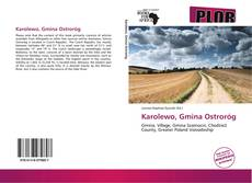 Bookcover of Karolewo, Gmina Ostroróg