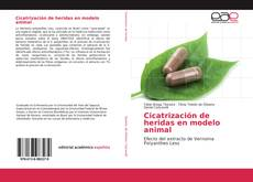 Bookcover of Cicatrización de heridas en modelo animal