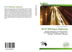 Portada del libro de M-37 (Michigan Highway)