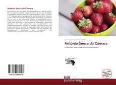 Capa do livro de António Sousa da Câmara