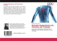 Bookcover of Estudio Ergonómico de Puestos de Trabajo