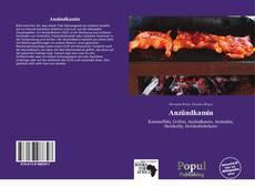 Bookcover of Anzündkamin
