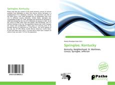 Bookcover of Springlee, Kentucky