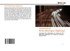 Bookcover of M-85 (Michigan Highway)