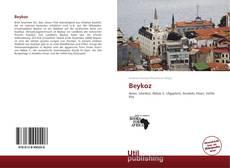 Обложка Beykoz